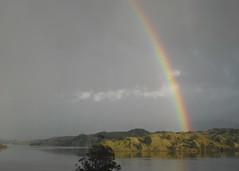 Rainbow over Hokianga by McLuckster