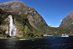Mystic Falls by nawapa
