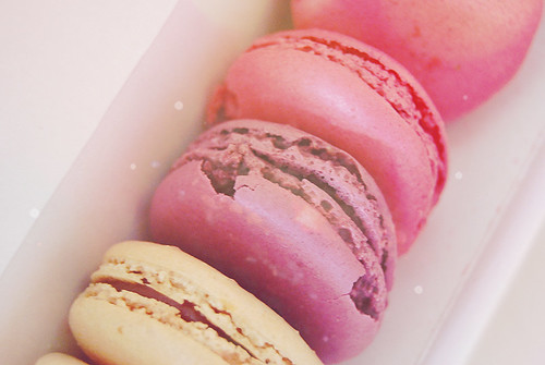 {macarons} | by {Jessica Louise}