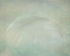 a whisper by Fiona * lunasdal