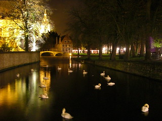The white swans of Minnewater | by Aaron Gustafson