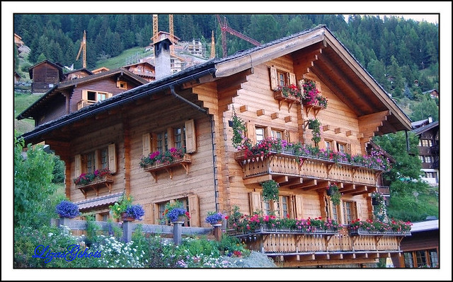 Summer Onto The Swiss Alps