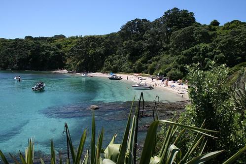 Tiritiri Matangi Island, New Zealand