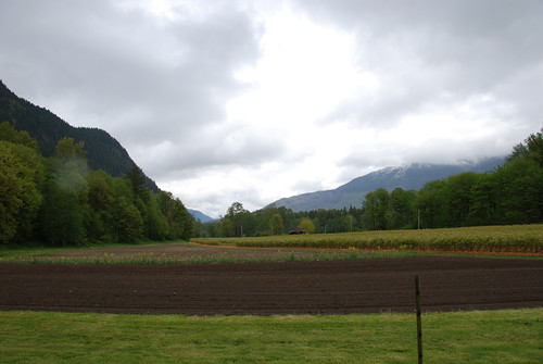 Cascadian Farm Lower Field | by Cascadian Farm