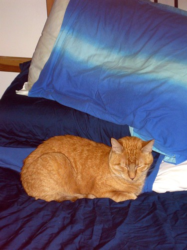 Mcqueen Bed Sheets