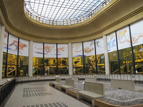 Fauverie m nagerie du jardin des plantes paris ve - Menagerie du jardin des plantes paris ...