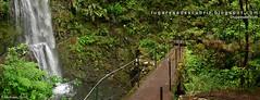 Riesgo de caída (Madeira, Santana)