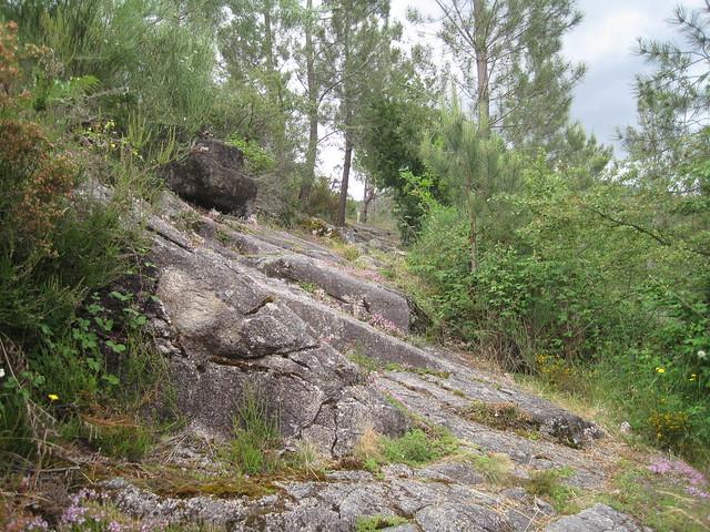 Sendero Sendeiro do Río Vilameá en el Xurés