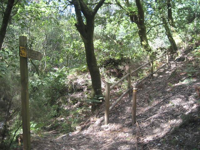 Sendero en el PR-G 146 Ruta Ambiental Castelo de Vitres