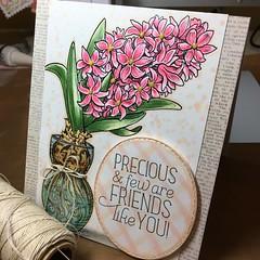 Power Poppy Hyacinth by Essie Cards