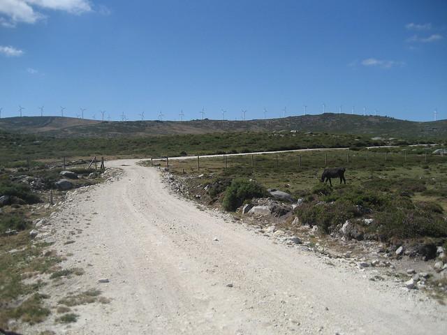 Pista en el PR-G 146 Ruta Ambiental Castelo de Vitres