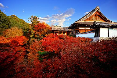 Koyo Kyoto Japan