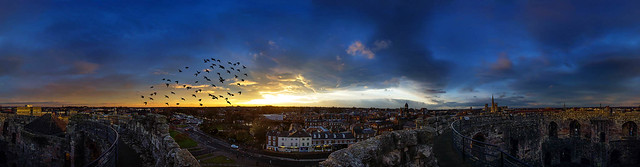 York Clifford tower pano birds