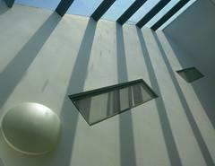 darting shadows by DavidCooperOrton