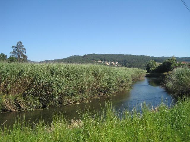 Río Donas en el Ruta Ponte Nafonso - Tambre