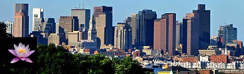 bostonDeannaHeader