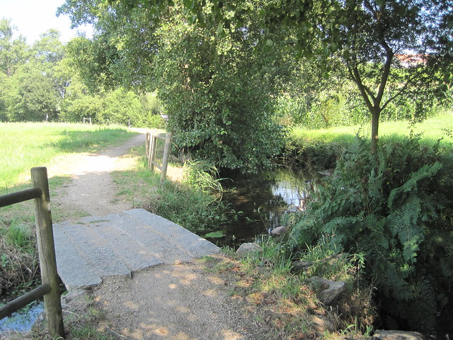 Sendero en el PR-G 171 Ruta do Río San Martiño