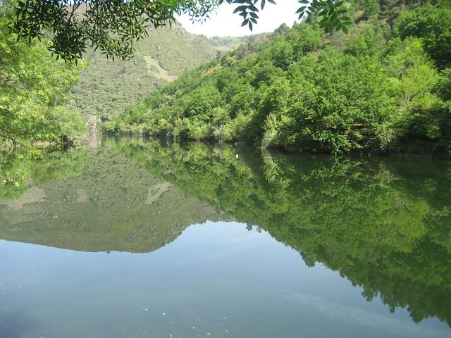 Río Mao en las Pasarelas del río Mao en Parada de Sil