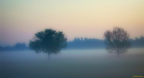 Morning has broken-2 | by Gerd Trynka-Ottosohn