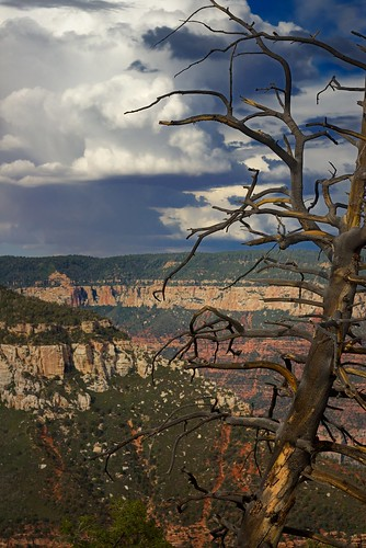 Grand canyon dramatic sky... Colors | by Mr MAMAZ