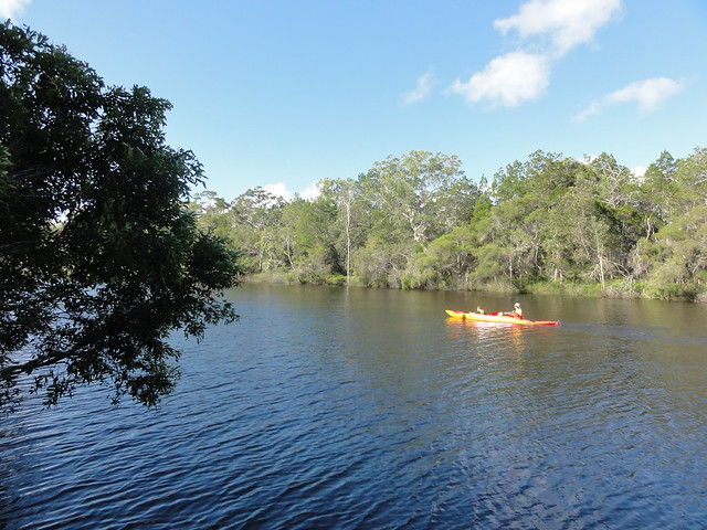 kayaking on Noosa river