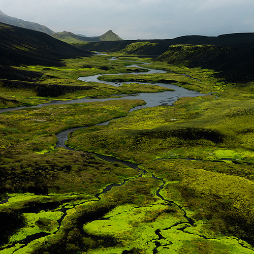 Shades Of Green | by Ben  H.