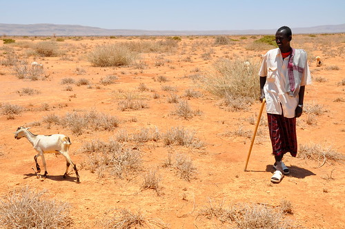 SomalilandDrought011 | by Oxfam East Africa
