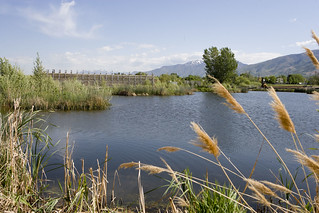 USUBC Wetland Discovery Point | by USU Botanical Center