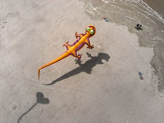 Kite Aerial Photography at Berck Kite Festival | by Pierre Lesage