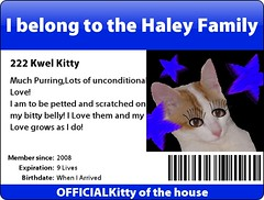 The Haley Family Kitty | by ♫ joyousjoym~ Blessings♥