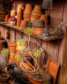 Pottery | by PhotoAtelier