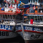 Fishing boats at Puerto Montt