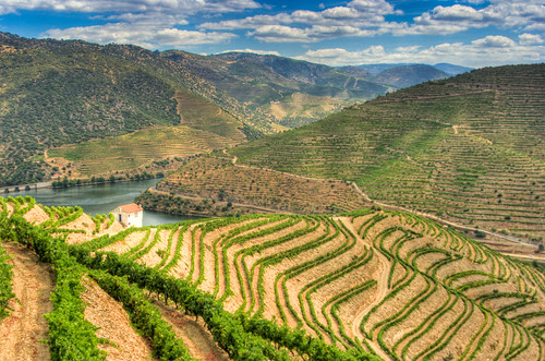 Douro Valley | by Ryan Opaz