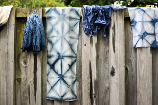 Advanced Natural Dyeing Reunion | by the workroom
