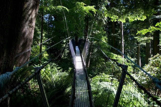 UBC Botanical Garden-7