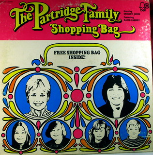 The Partridge Family Shopping Bag | by kevin dooley