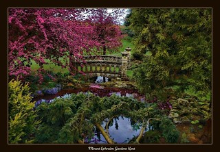 mount ephraim gardens kent | by stevekeat images best viewed large