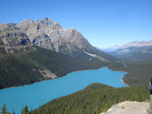 Peyto lake | by Nature's Eye 88