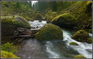 Tanner Creek | by Einahpets32 (Stephanie)