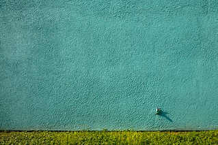 wall with outlet and grass | by xgray