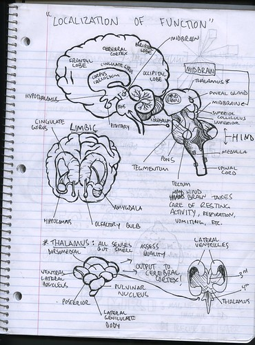 Neuroscience Notebook | by labguest