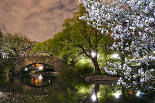 Nikon D5000 test Central Park | by JC Richardson