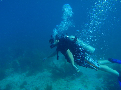 Scuba Diving in Mexico at Clint's Wedding | by Mark & Andrea Busse