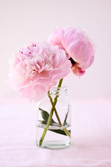 peonies | by cannelle-vanille