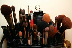 Makeup Kit 5-5-09 IMG_3534