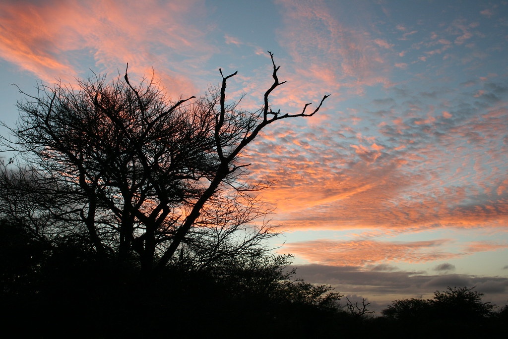 Kruger National Park, South Africa