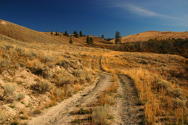 road up in the hills above Merritt