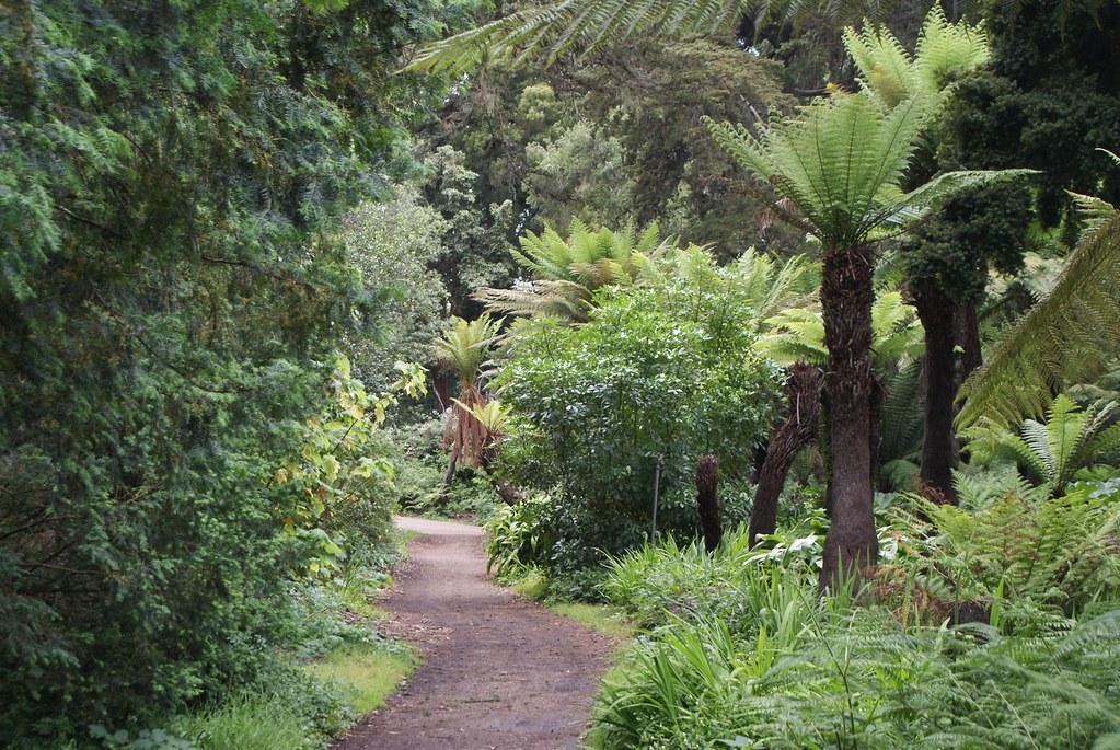 > Le parc se prête bien à la balade ou au footing/running de jour. De nuit, le parc n'est pas conseillé.