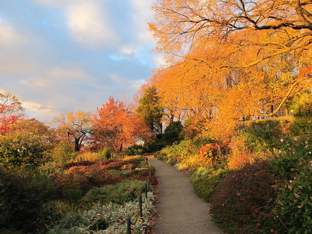 Heather Garden, Fort Tryon Park