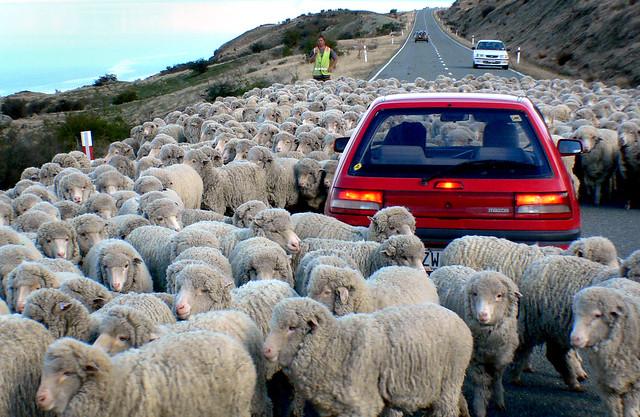 Down a rural road.NZ